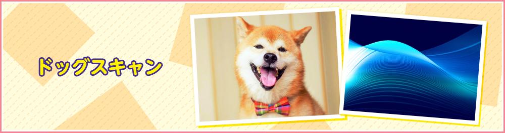 dogscan_main